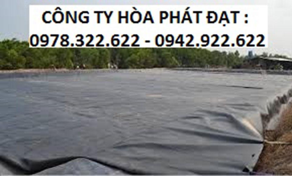cung-cấp-số-lượng-lớn-bạt-HPDE-màng-chống-thấm-lót-ao-hồ-chứa-nước-giá-sĩ