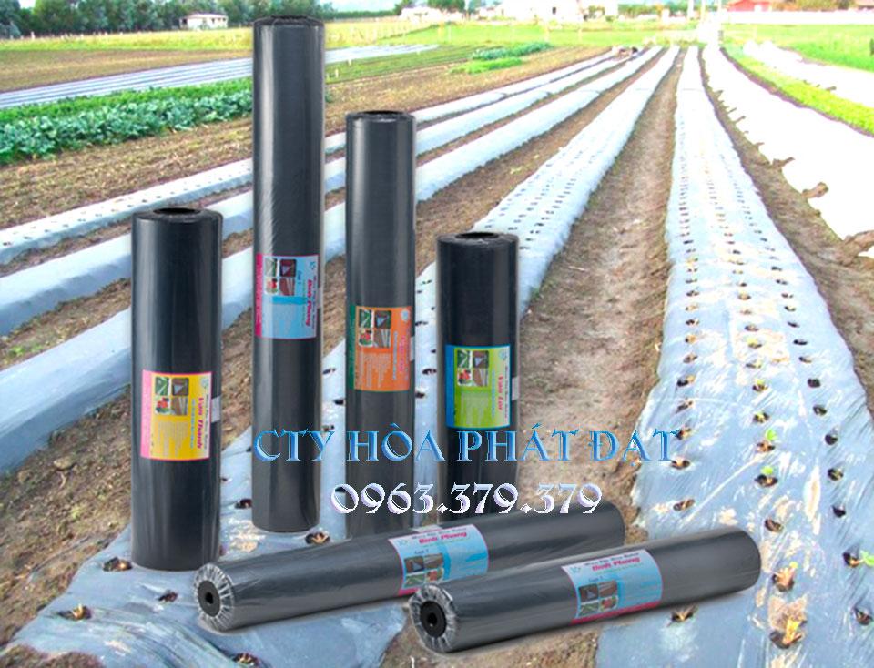 màng-bạt-nilong-trồng-cây-phủ-nông-nghiệp-giá-rẻ